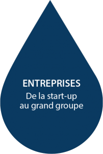 De la start-up au grand groupe