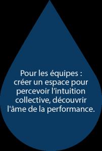 Pour les équipes : créer un espace pour percevoir l'intuition collective, découvrir l'âme de la performance.
