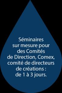 Séminaires sur mesure pour des Comités de Direction, Comex, comité de directeurs de créations : de 1 à 3 jours.